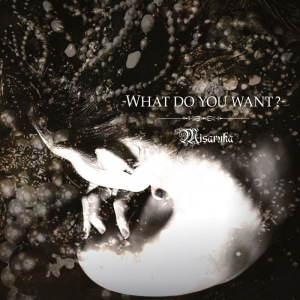 Cover del album '-WHAT DO YOU WANT?- (CD)' di Misaruka